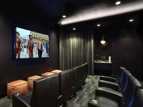 State of the Art Theater With 110