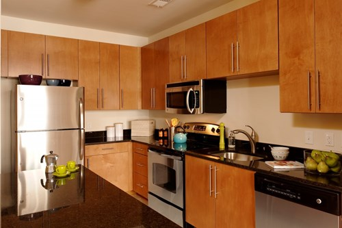 Contemporary Kitchens With Upscale Finishes