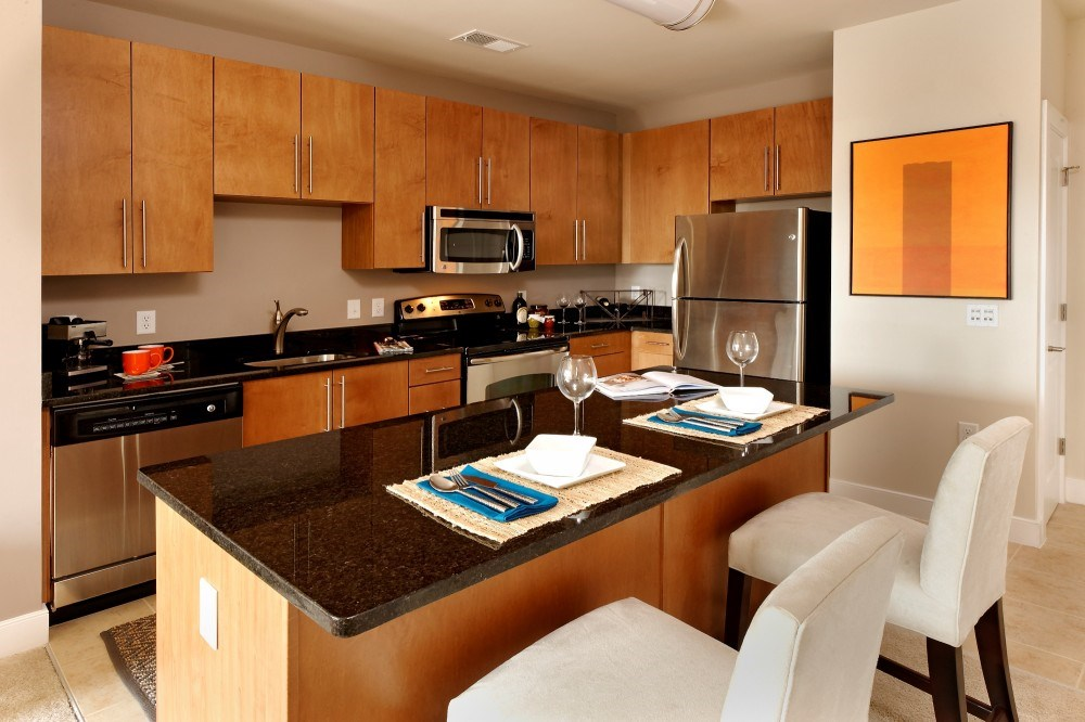 Modern Kitchens With Granite or Quartz Counters