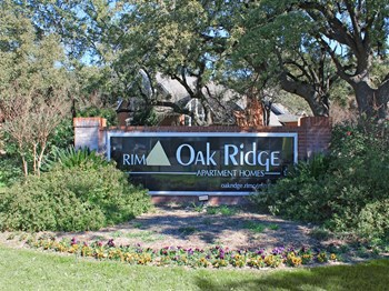 11200 Perrin Beitel 1-2 Beds Apartment for Rent Photo Gallery 1