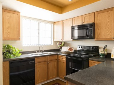 16220 N. 7th Street 1-2 Beds Apartment for Rent Photo Gallery 1