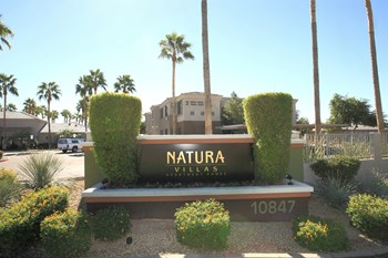 10847 West Olive Avenue 1-3 Beds Apartment for Rent Photo Gallery 1