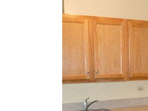 285 Peppertree Drive 1 Bed Apartment for Rent Photo Gallery 1