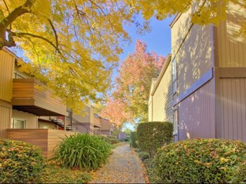 21701 Foothill Blvd 1-3 Beds Apartment for Rent Photo Gallery 1