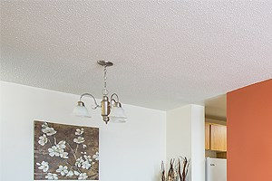 1330 Richmond Road Studio-2 Beds Apartment for Rent Photo Gallery 1