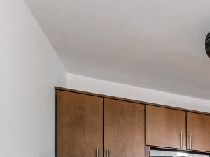 800 Hinman Ave. Studio-1 Bed Apartment for Rent Photo Gallery 1