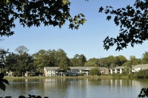 7645 Garners Ferry Road 1-3 Beds Apartment for Rent Photo Gallery 1