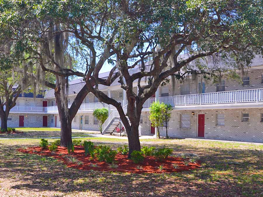 colonial parc drive studio3 beds apartment for rent photo gallery 1. 1 Bedroom Student Apartments Tampa  Ocean Front Female  17 Best