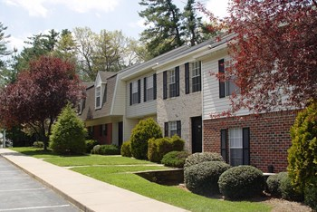 145 Haw Creek Mews Dr 1-3 Beds Apartment for Rent Photo Gallery 1
