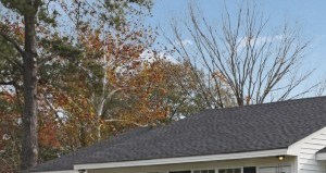 1000A Elm Street 1-2 Beds Apartment for Rent Photo Gallery 1