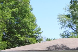 6217 E 95th Terr 3 Beds House for Rent Photo Gallery 1