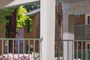 25092 Farthing Street 1-2 Beds Apartment for Rent Photo Gallery 1