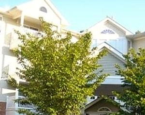 100 Forest Ridge Drive 1-2 Beds Apartment for Rent Photo Gallery 1