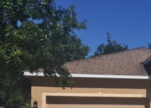 12128 Tasha Ct 3 Beds House for Rent Photo Gallery 1