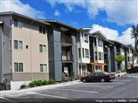 942 Discovery Circle NE 1-3 Beds Apartment for Rent Photo Gallery 1