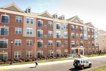 4640 Daisy Reid Avenue 1-2 Beds Apartment for Rent Photo Gallery 1