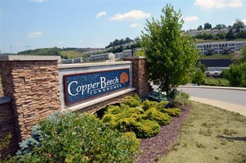 200 Tupelo Drive 1-4 Beds Apartment for Rent Photo Gallery 1