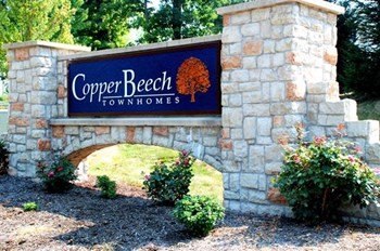 986 S. Copper Beech Way Unit A 1-4 Beds Apartment for Rent Photo Gallery 1