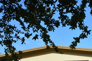 5115 Sw 112th Avenue 3 Beds House for Rent Photo Gallery 1