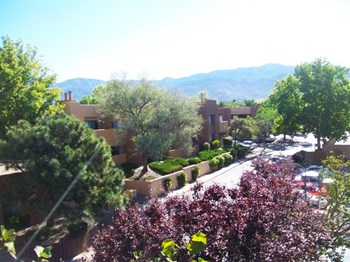5905 Tierra Antigua NE 1-3 Beds Apartment for Rent Photo Gallery 1