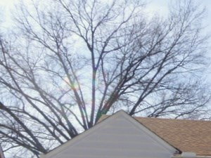 4329 Marlin Avenue 3 Beds House for Rent Photo Gallery 1