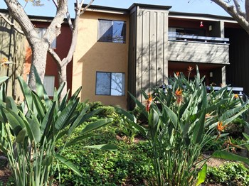 4401 Mission Avenue 1-3 Beds Apartment for Rent Photo Gallery 1