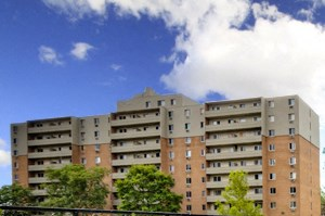 961 Wonderland 1-2 Beds Apartment for Rent Photo Gallery 1