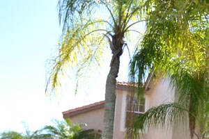 3097 SW 179th Avenue 3 Beds House for Rent Photo Gallery 1