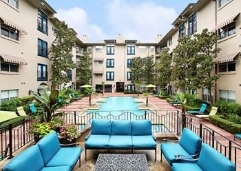 2815 Allen Street #120 Studio-2 Beds Apartment for Rent Photo Gallery 1