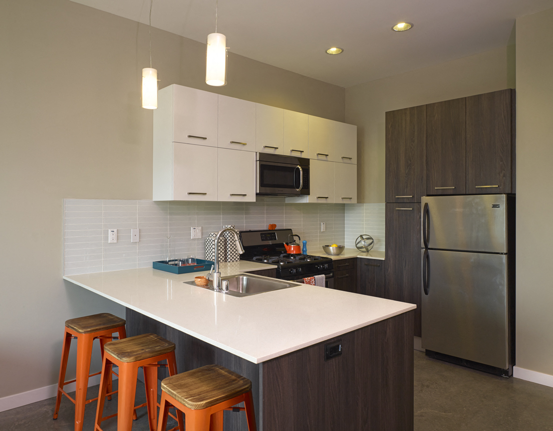 Custom Italian Kitchen cabinets and stainless steel Kitchen suite. M Lofts  apartments in West Los Angeles