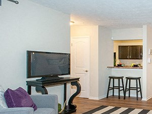 3341 Peachtree Corners Studio-2 Beds Apartment for Rent Photo Gallery 1
