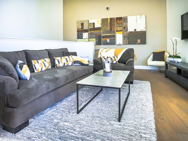 201 Marshall St. Studio-2 Beds Apartment for Rent Photo Gallery 1