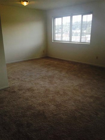 2900 & 2910 S. Glebe Rd. Studio-3 Beds Apartment for Rent Photo Gallery 1