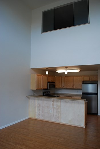 1102 1st Avenue North 2-3 Beds Apartment for Rent Photo Gallery 1