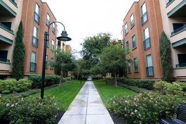 1987 Bridgepointe Circle 1-3 Beds Apartment for Rent Photo Gallery 1