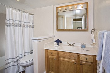 1668 Carlyle Drive 1-3 Beds Apartment for Rent Photo Gallery 1