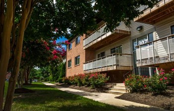 801 8th Street 1-2 Beds Apartment for Rent Photo Gallery 1