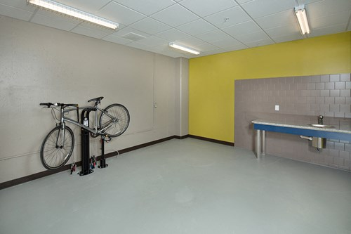 LOW GEAR, Bike Maintenance room with work bench