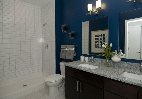 Expansive bathroom with double sinks