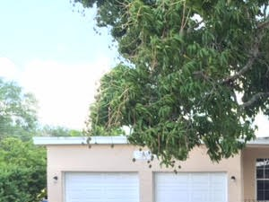 7021 SW 10th Court 3 Beds Apartment for Rent Photo Gallery 1