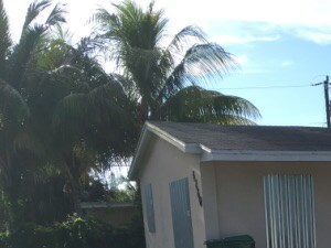 4260 SW 18 Street 3 Beds House for Rent Photo Gallery 1