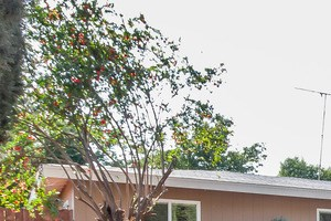 5440 Montgomery St 3 Beds House for Rent Photo Gallery 1