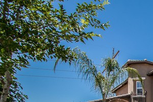 121 Headlands Way 4 Beds House for Rent Photo Gallery 1