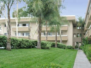 2175 South Mallul Drive Studio-2 Beds Apartment for Rent Photo Gallery 1