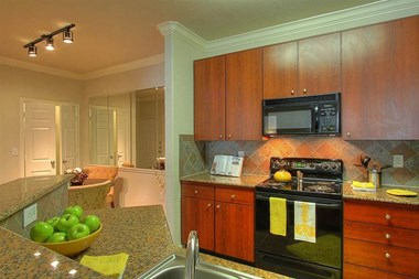 2250 Eldridge Parkway 1-3 Beds Apartment for Rent Photo Gallery 1