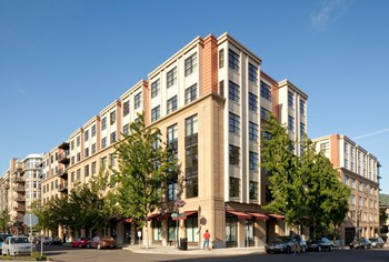 1115 NW Northrup St Studio-2 Beds Apartment for Rent Photo Gallery 1