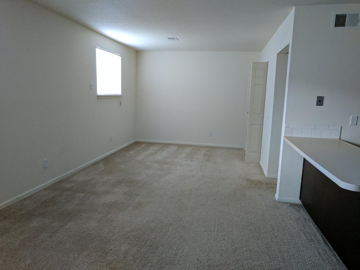 Living Room and Bedroom (Studio)