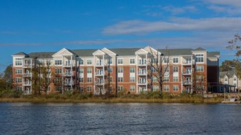 1001 Bolling Avenue 1-3 Beds Apartment for Rent Photo Gallery 1