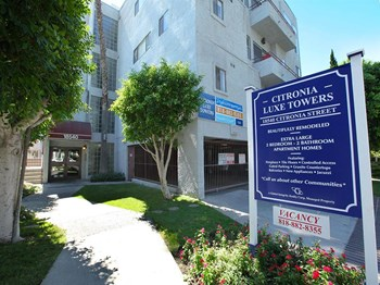 18540 Citronia Street 2 Beds Apartment for Rent Photo Gallery 1