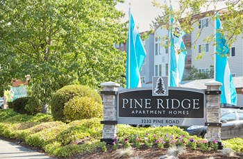 3232 Pine Rd NE 2-3 Beds Apartment for Rent Photo Gallery 1